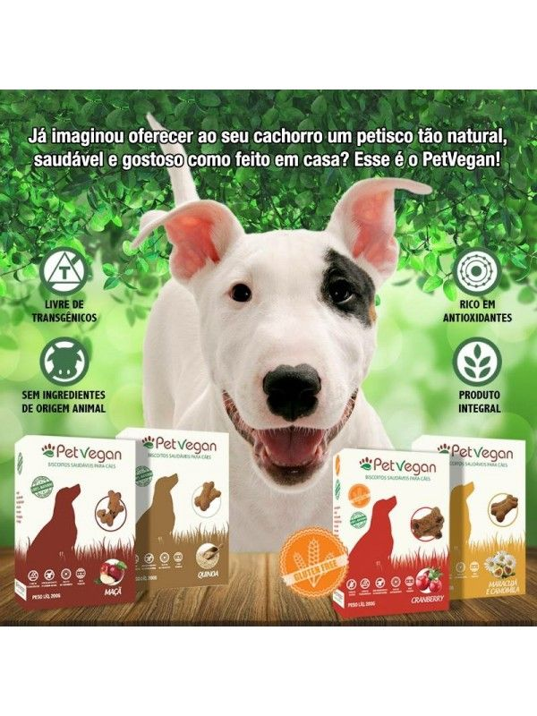 Kit 5 Biscoitos Natural PetVegan